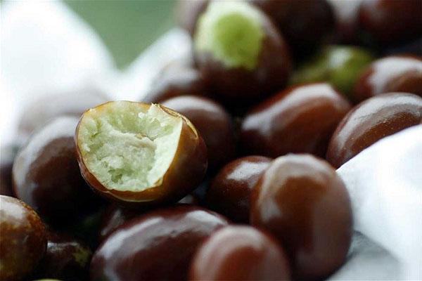 спелые плоды зизифуса