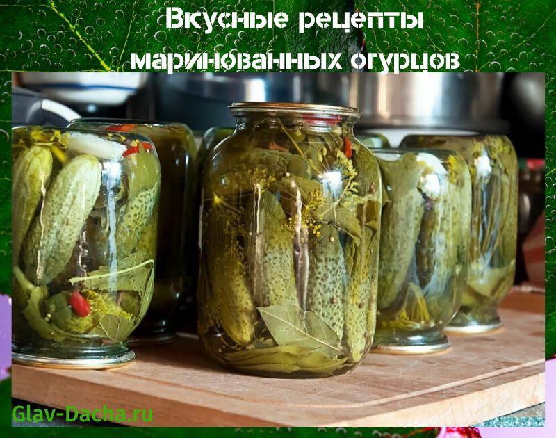 рецепты маринованных огурцов