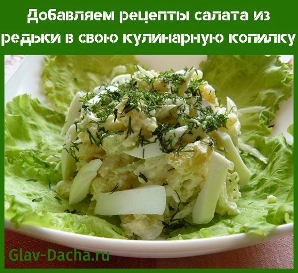 рецепты салата из редьки