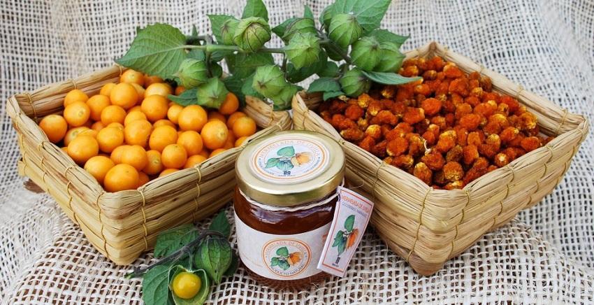 Свежие и засушенные плоды растения