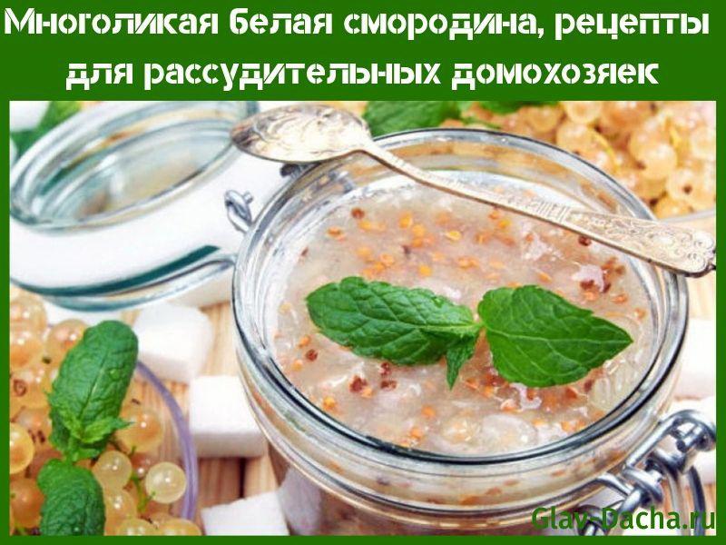 белая смородина рецепты