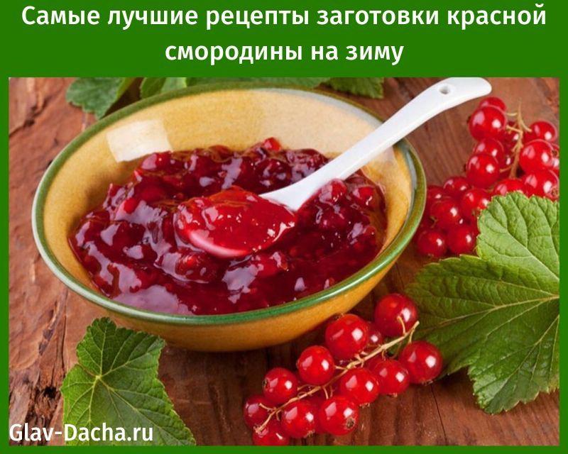лучшие рецепты заготовки красной смородины на зиму