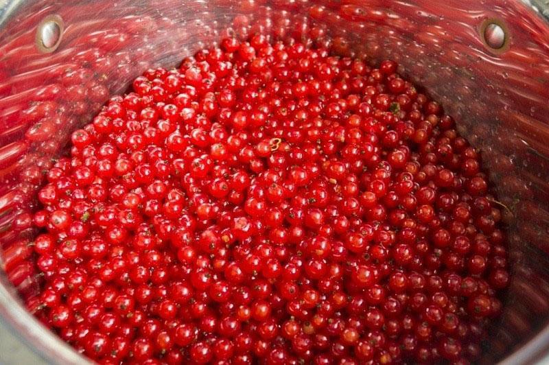 промыть и перебрать ягоды