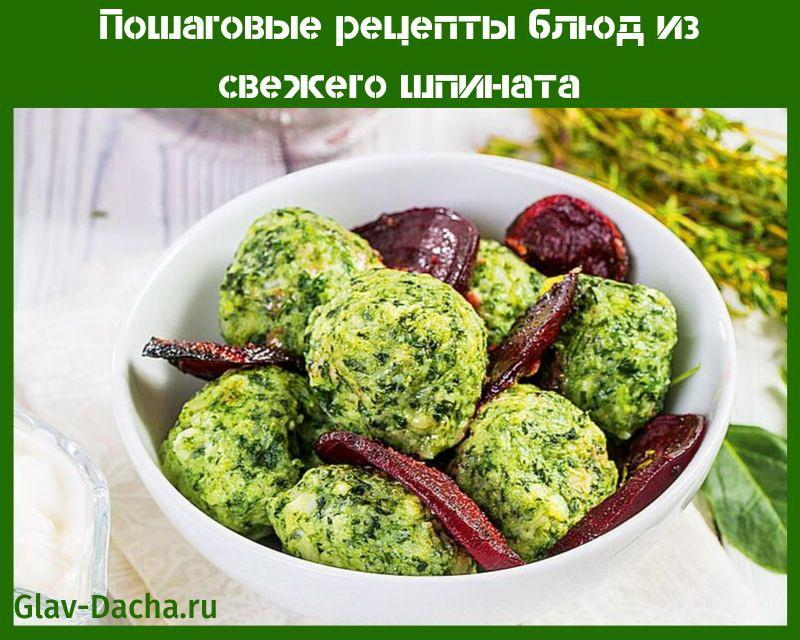 рецепты блюд из свежего шпината
