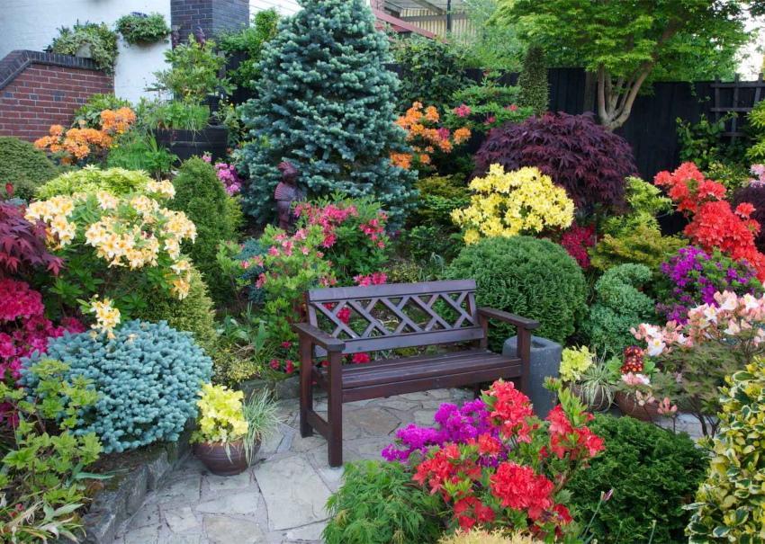 уголок отдыха среди цветов