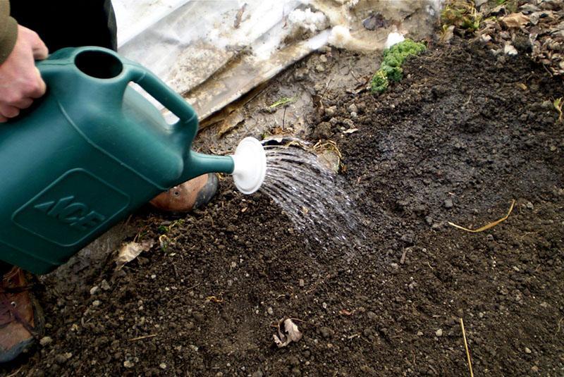 проливание почвы
