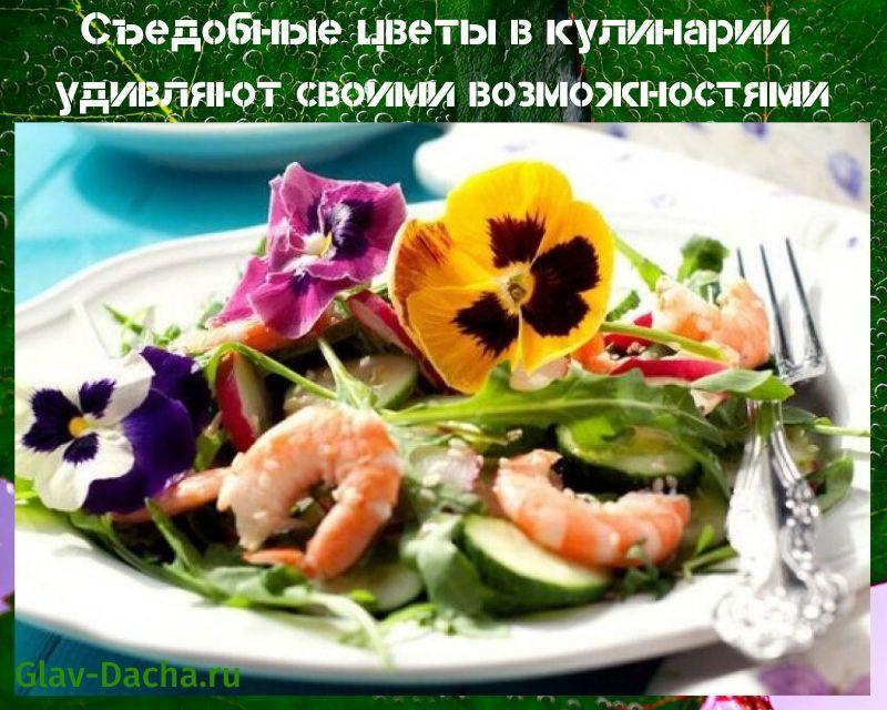 съедобные цветы в кулинарии