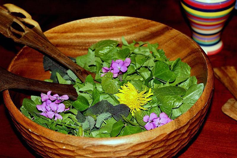 салат из съедобных цветов