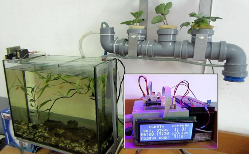 aquaponics equipment