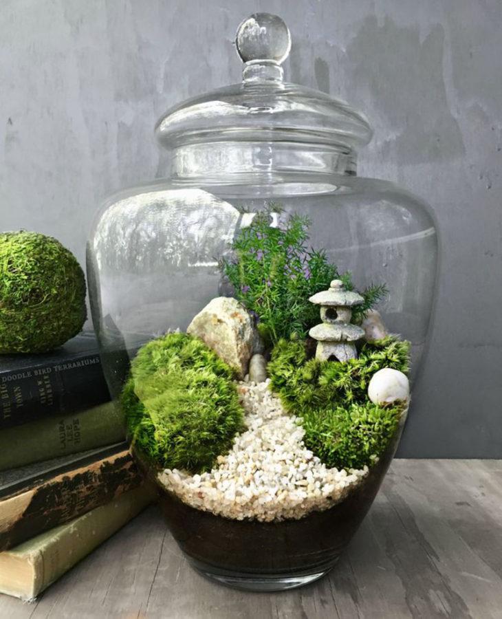 выбор грунта для сада в бутылке