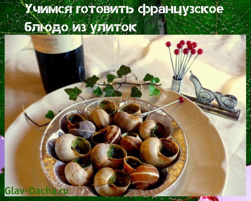 французское блюдо из улиток