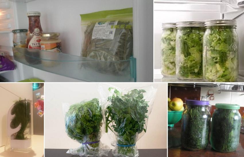 как хранить зелень в холодильнике долго