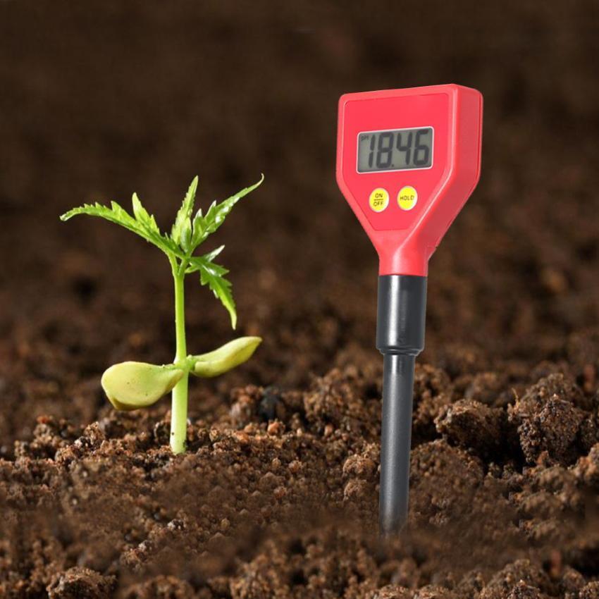 как нейтрализовать кислотность почвы