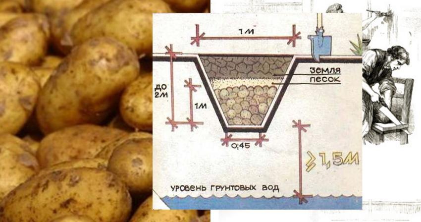 как сделать яму бурт для картофеля