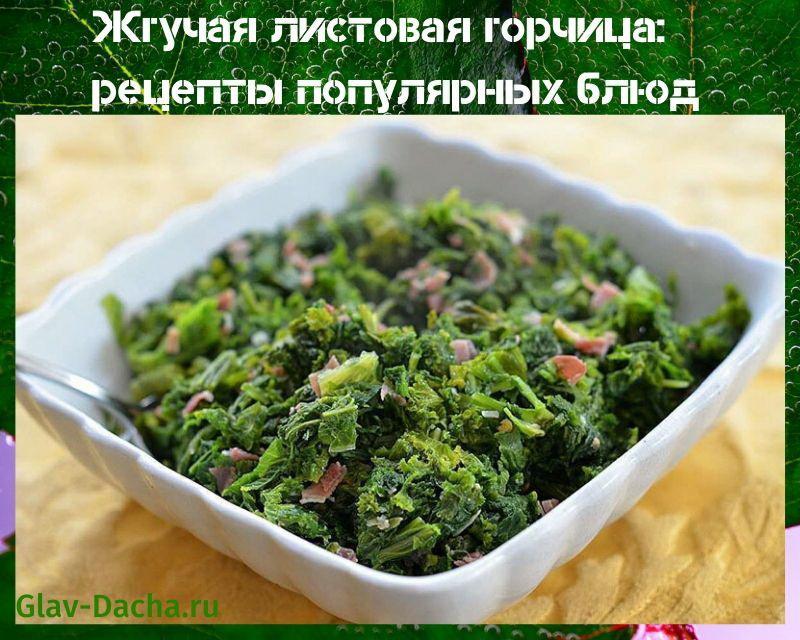 листовая горчица рецепты