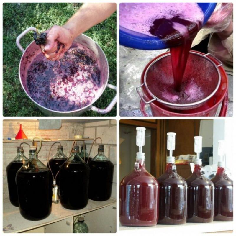 как изготовить виноградное вино