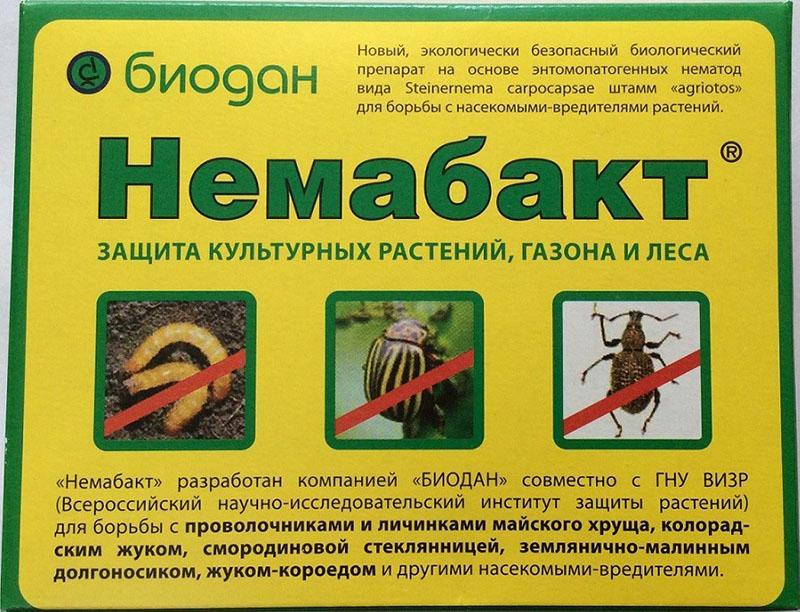 инструкция по применению немабакта для защиты культурных растений
