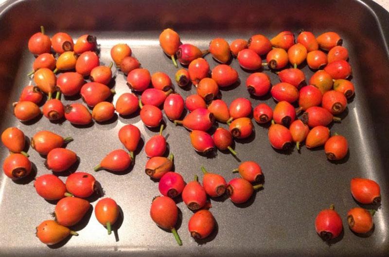 плотные ягоды