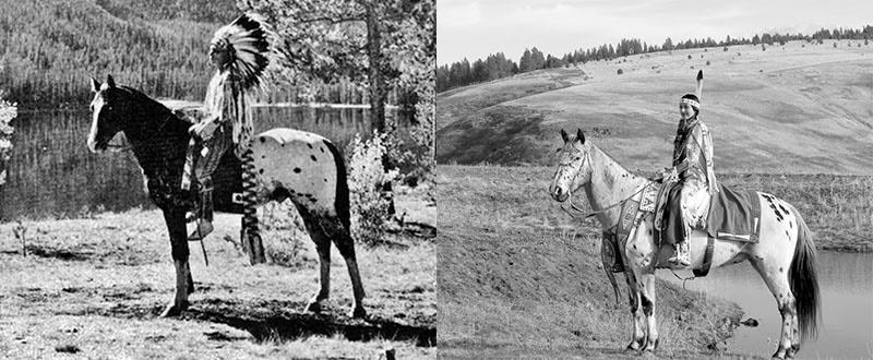 индейцы на лошадях породы аппалуза