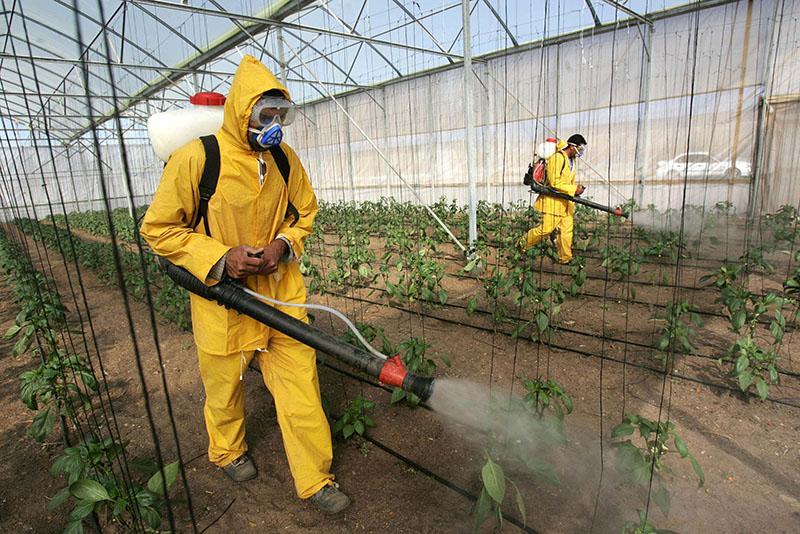 меры безопасности при работе с раствором