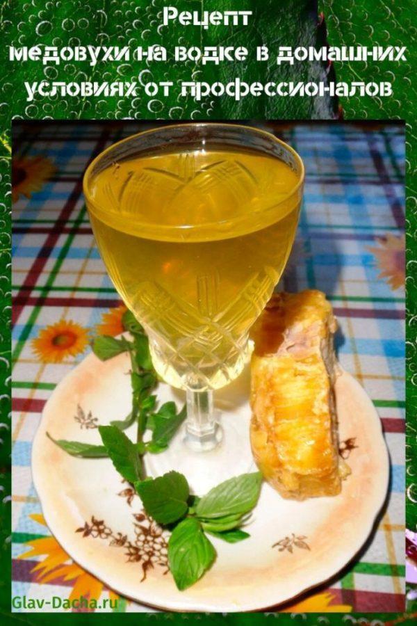 рецепт медовухи на водке