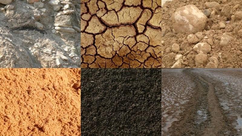 виды почв и их характеристика по механическому составу
