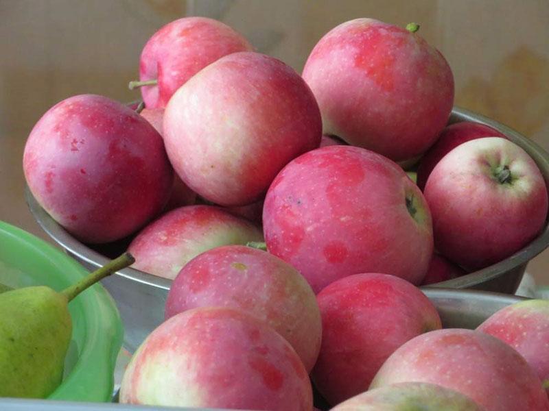 сладкие сочные плоды