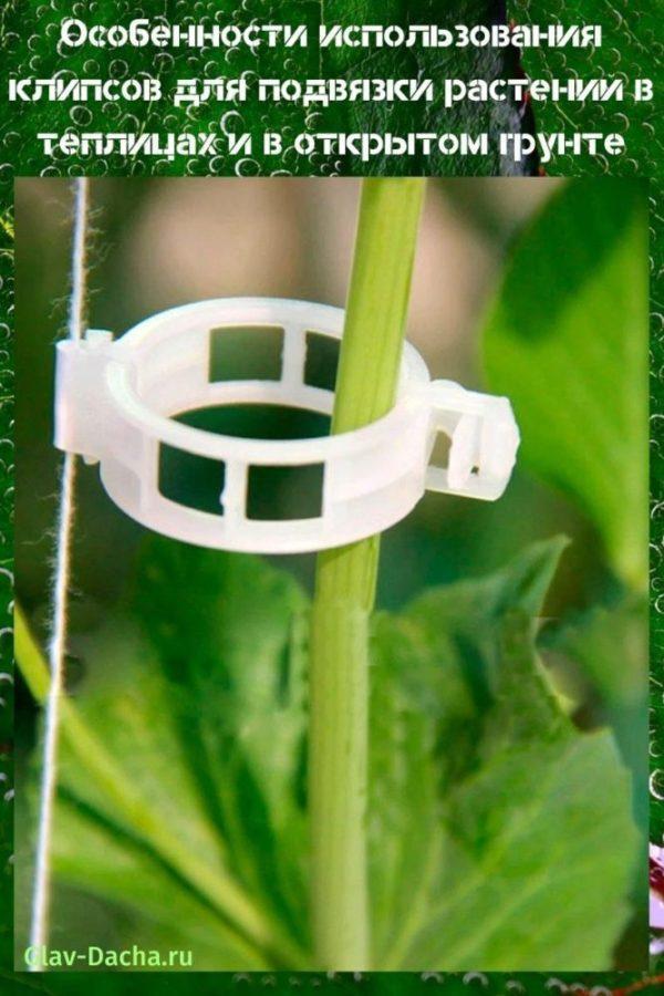 трос для подвязки растений в теплице