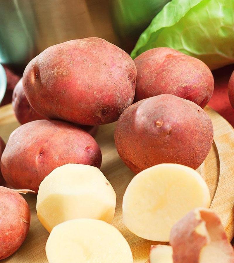 картофель сорта ирбитский в разрезе