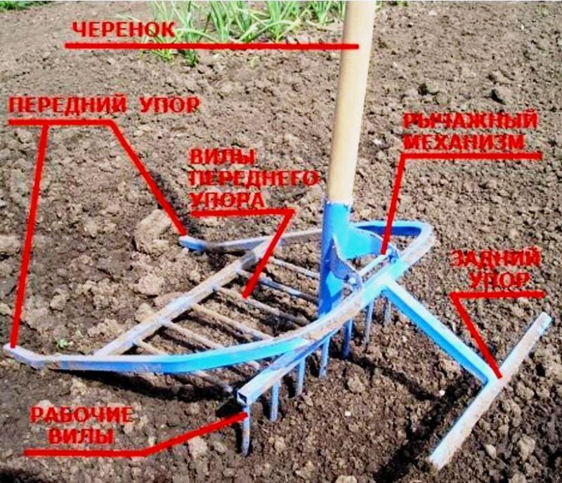 строение чудо лопаты