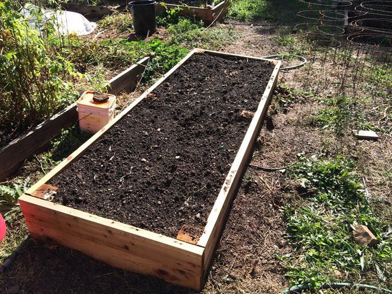 подготовка грядки к посадке овощей осенью