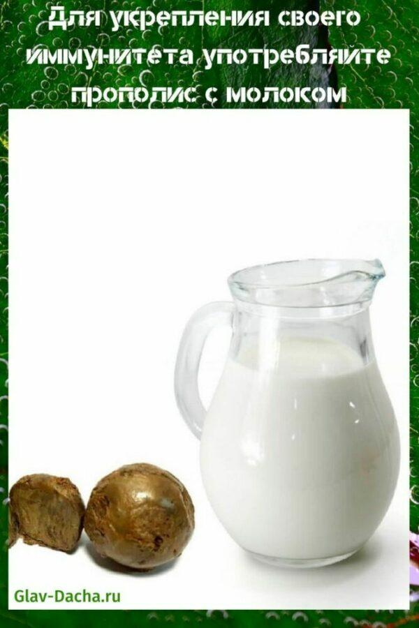 прополис с молоком