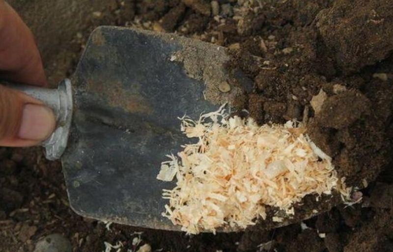 как сделать почвосмесь с опилками