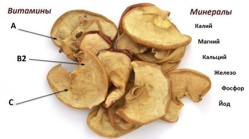 химический состав сушеных яблок