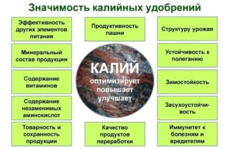 значимость калийных удобрений
