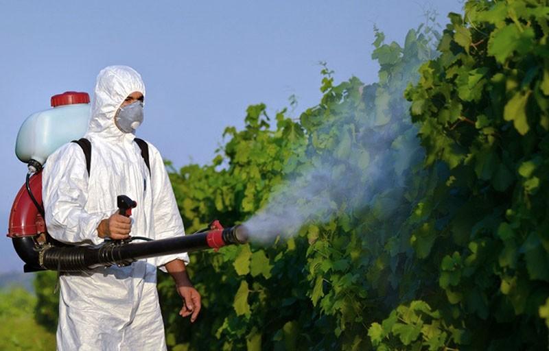 особенности пестицидов