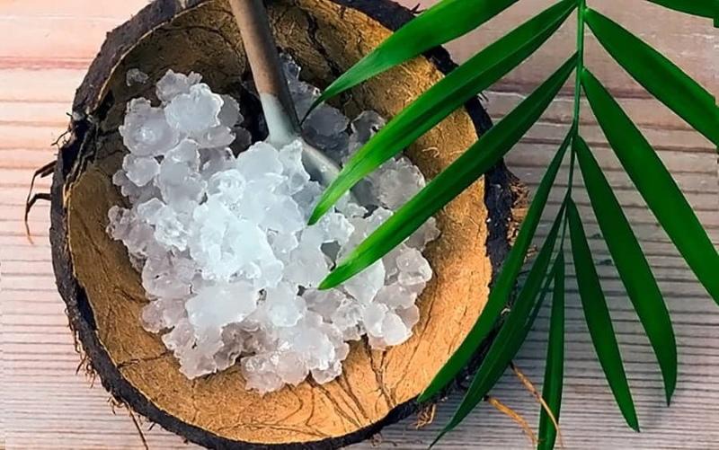 морской рисовый гриб лечебные свойства отзывы