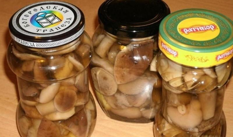 маринованные грибы курочки