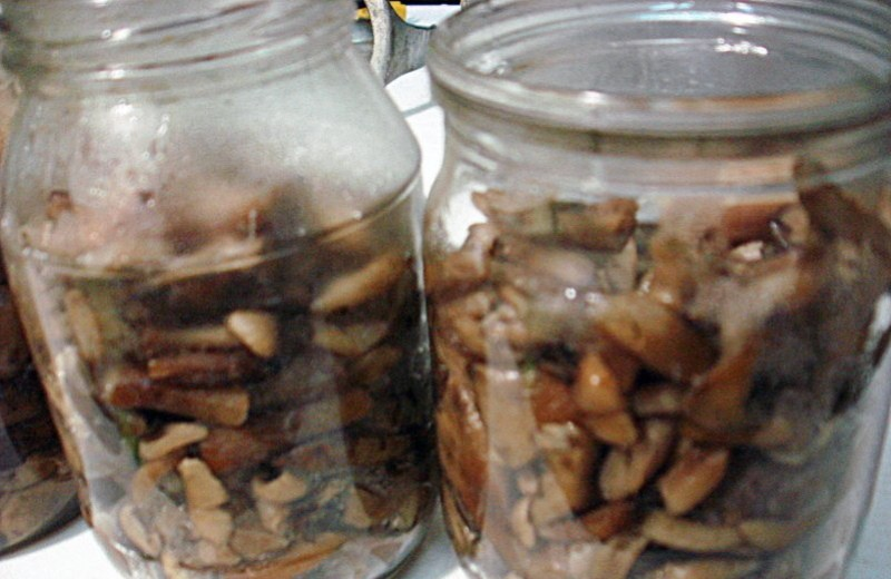 что делать если помутнели грибы