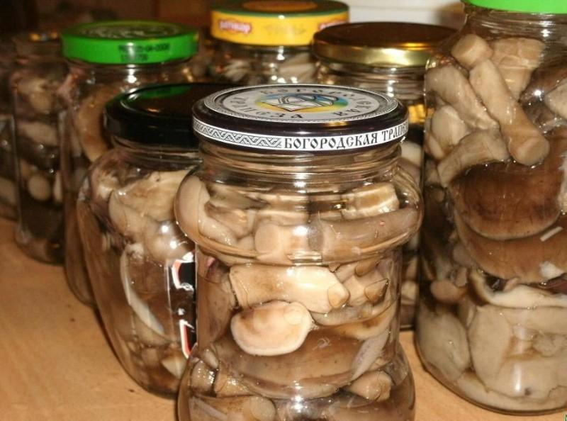 грибы быстрого приготовления