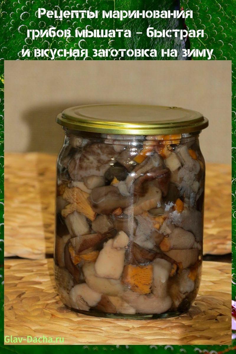 рецепты маринования грибов мышата