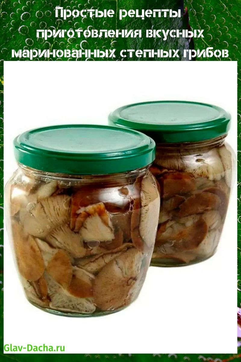 рецепт маринованных степных грибов