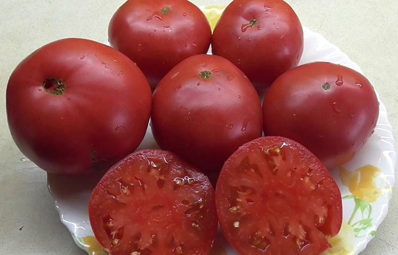 томат чудо земли в разрезе
