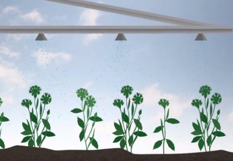 как действует гербицид биатлон