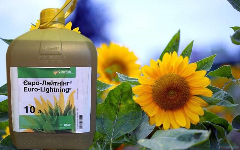 инструкция гербицида евролайтинг