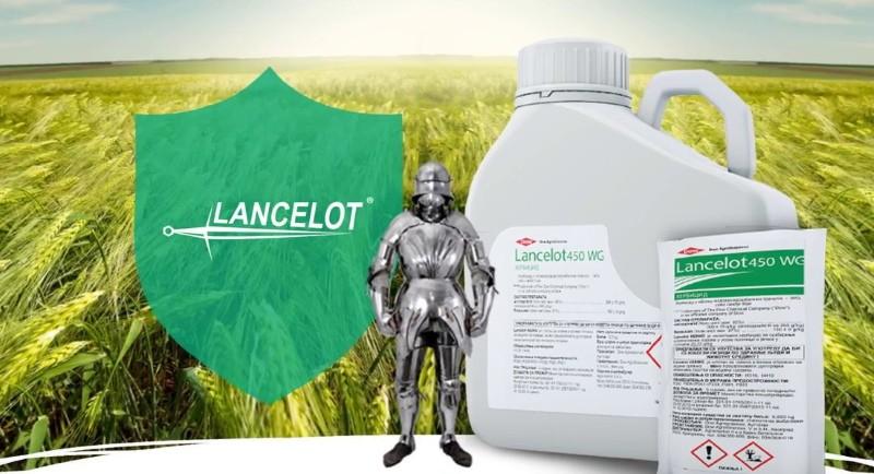 гербицид ланцелот применение