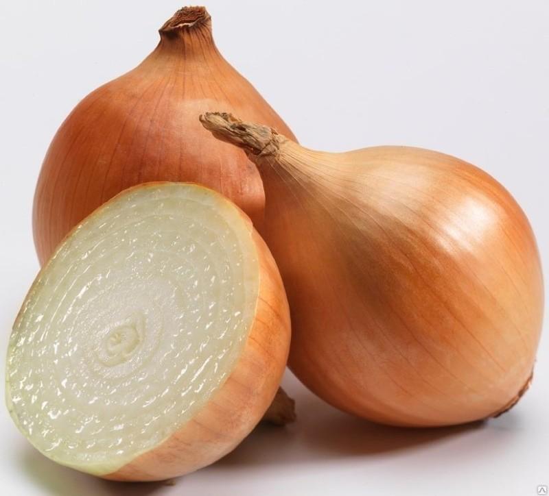 луковицы сорта центурион