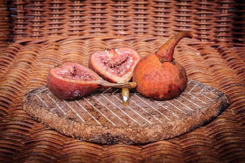 плоды инжира браун туркей