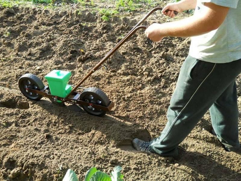 посев семян ручной сеялкой