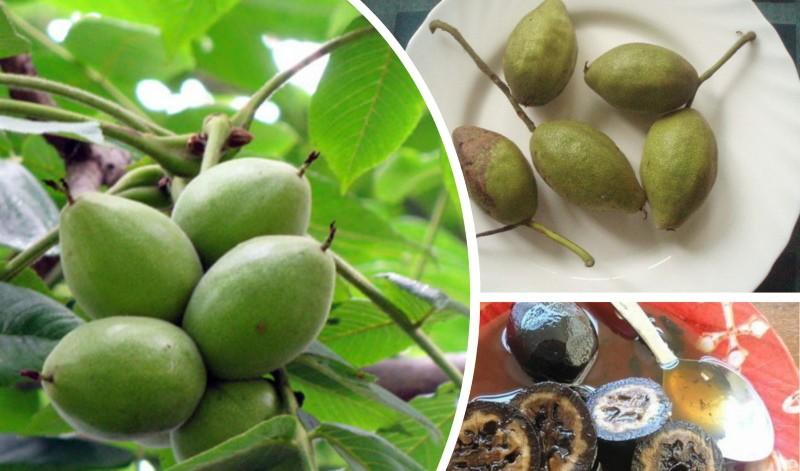 варенье из маньчжурского ореха
